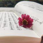 读《传习录》,发现治家之本